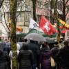"""Prašome paremti iniciatyvinės grupės """"Išsaugokime Šiaulių medžius"""" veiklą"""